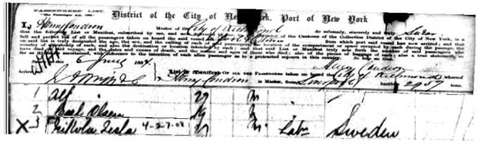 A one step portal for on line genealogy for Castle garden immigration records